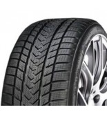 GRIPMAX STATUS PRO WINTER 225/45R19 96V XL-GM01